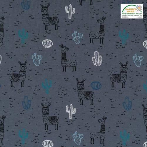 Jersey gris motif lama et cactus