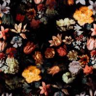 Panne de velours noire imprimée fleur