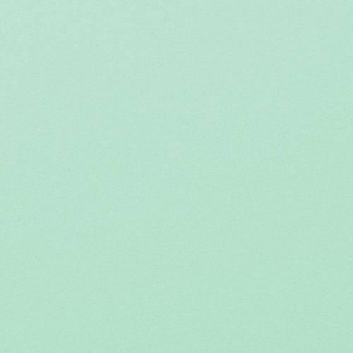 Coton vert d'eau uni oeko-tex