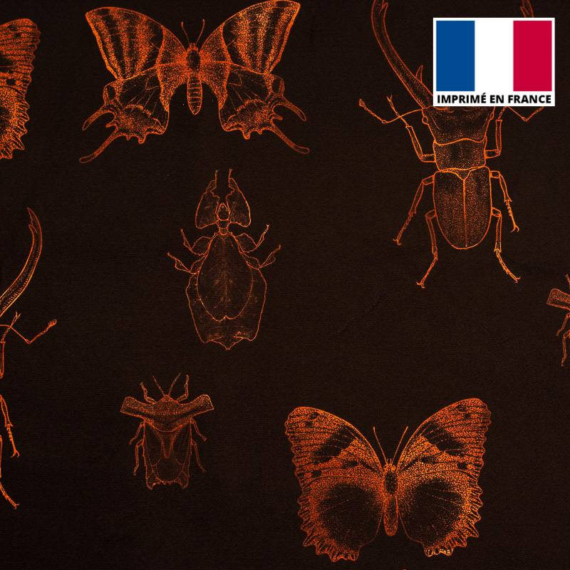 Velours ras noir insectes orange sanguine