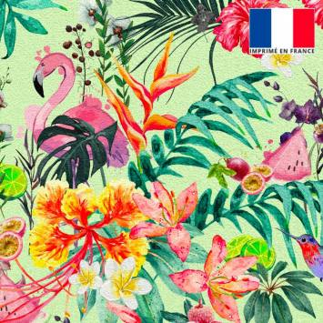 Velours ras vert pistache motif fruit tropical