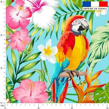 Perroquet exotique rouge - Fond bleu