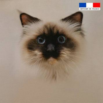 Coupon 45x45 cm motif chat Sacré de Birmanie
