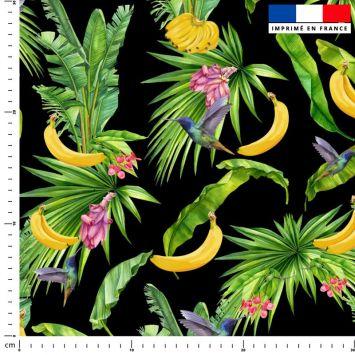 Banane et colibri - Fond noir