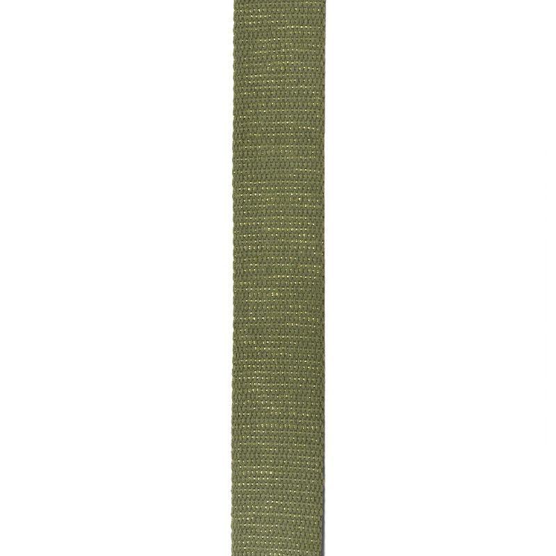 Sangle paillette verte 30 mm