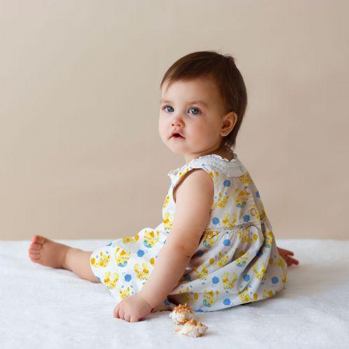Chaton jaune pelote bleue - Fond blanc
