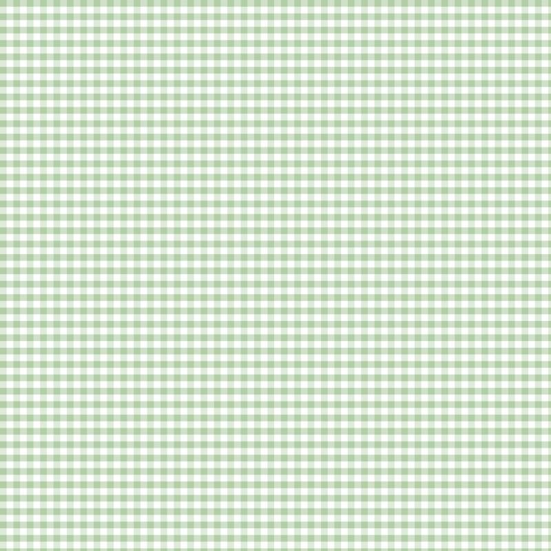 Coton vichy menthe 5 mm