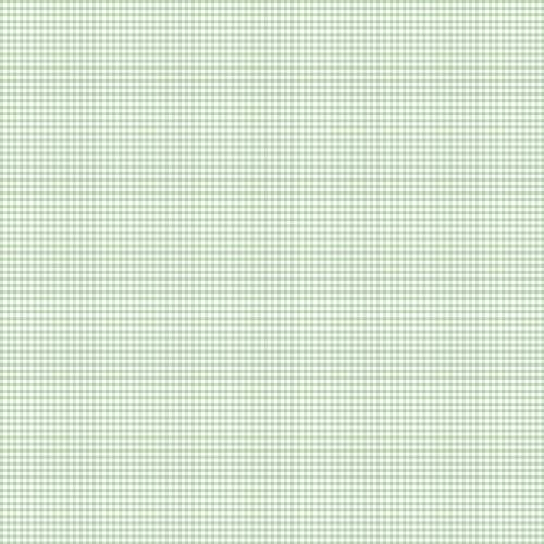 Coton vichy menthe 3 mm